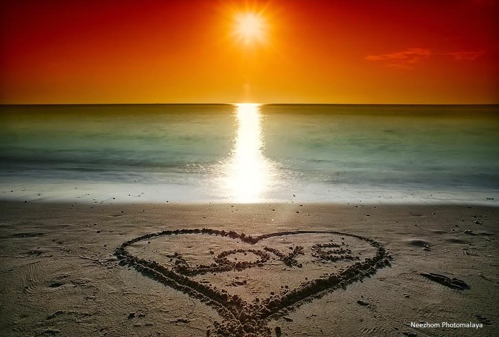 sunlit at the love beach