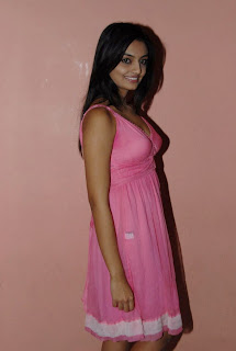 Nikitha Narayan in a stunning small pink Gown Spciy Pictures
