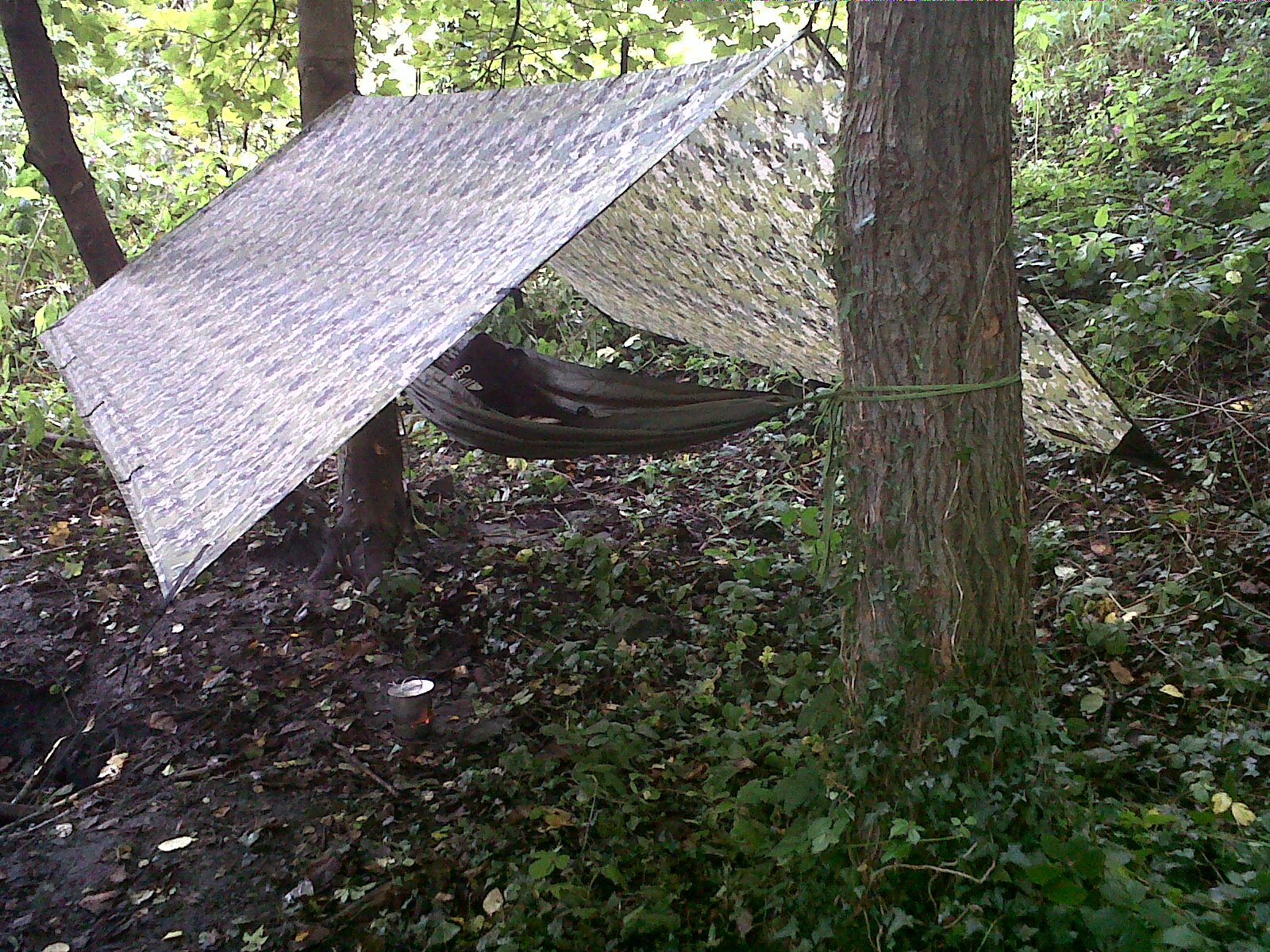 the hammock is set up using the original webbing looped around the tree and the hammock is tied to the trees using two quick release knots and prussic loops     the outdoorist  hammock set up  rh   theoutdoorist blogspot