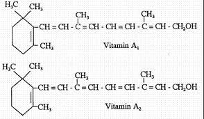 Vitamin có vai trò quan trọng  trong thức ăn chăn nuôi.