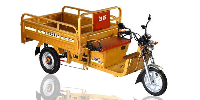Triciclo Moto Carro electrico