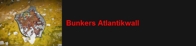 http://www.bunkerinfo.nl/2010/12/overzicht-totaal-gebouwde-bunkers.html