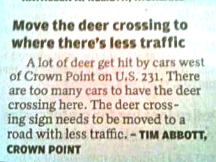 news clip about move the deer crossing to where there's less traffic