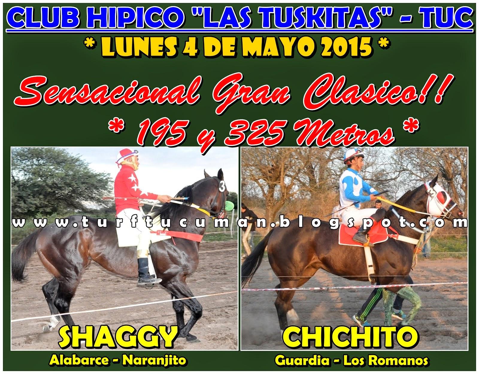 SHAGGY VS CHICHITO