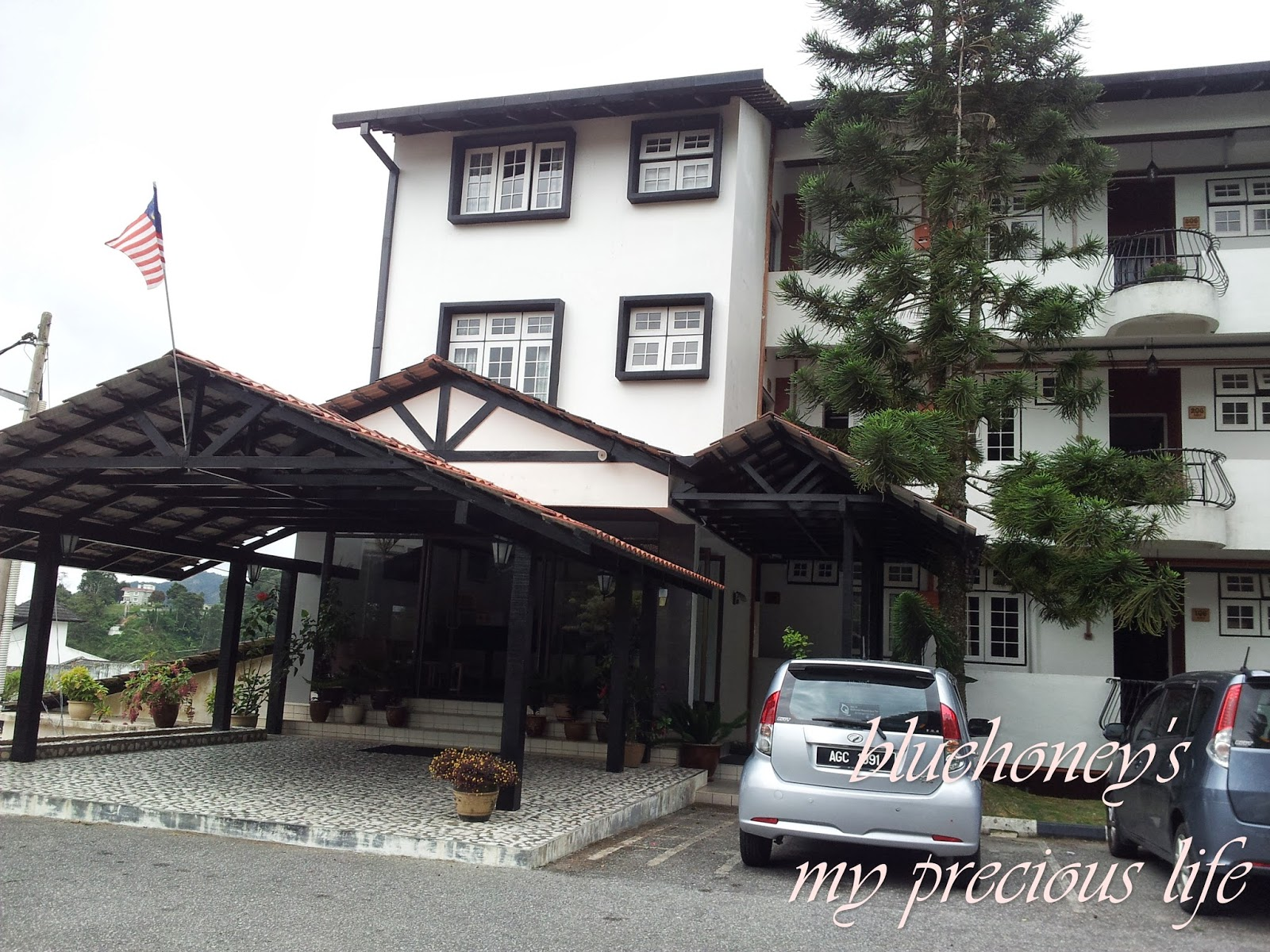 CAMERON HIGHLANDS PART III