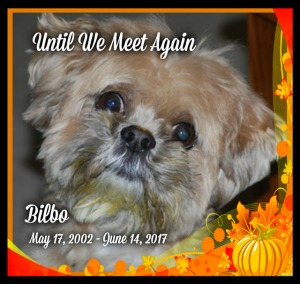 WE will miss you Bilbo