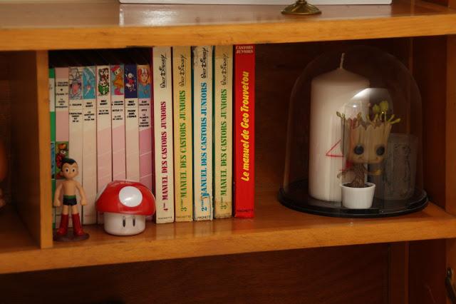 livres bibliotheque rose