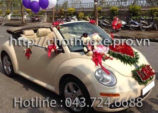Cho thuê xe cưới mui trần Bọ Beetle