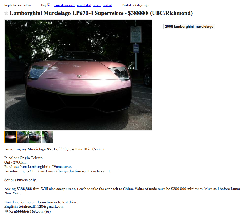 Whispers From The Edge Of The Rainforest Wed Post 1 Craigslist Ad