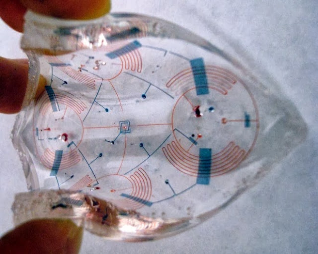 A Mad Scientist Designing Organs That Could Give You Superpowers