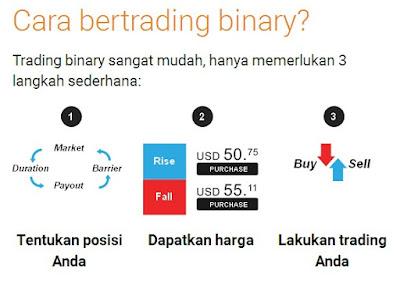 cara cepat kaya dengan bisnis binary