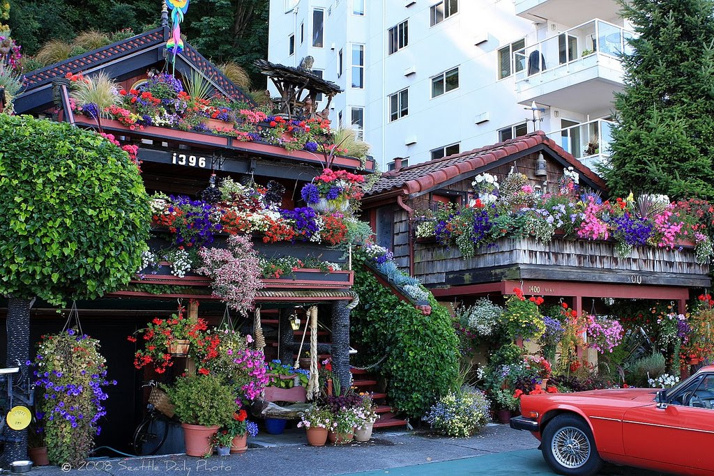 Fabulous Flower House