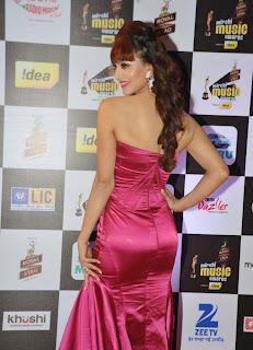 urvashi rautela stills at filmfare glamour and style awards 2015 2