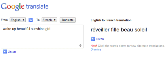 Google Translate, Now With Voice Input