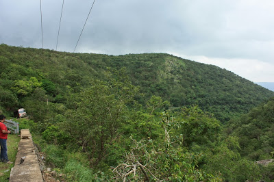 The forested valley of Hasanur Ghat on the way down to NH 209 and Dimbam village from Bailur along Kollegal - Hasanur Road