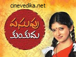 Watch Pasupu Kumkuma Telugu Daily Serial