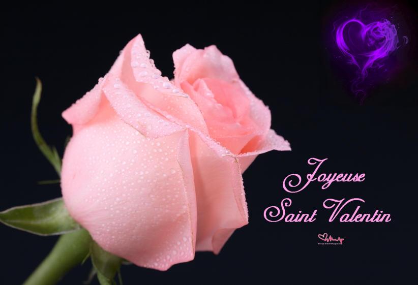 Sms d 39 amour 2018 sms d 39 amour message sms romantique pour la saint valentin - Image saint valentin romantique ...
