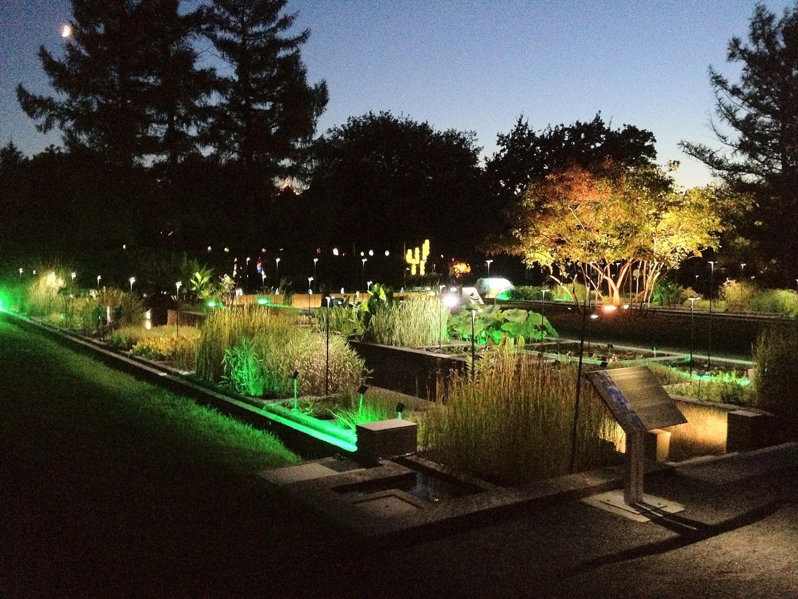 Jardin de lumi¨res Jardin Botanique
