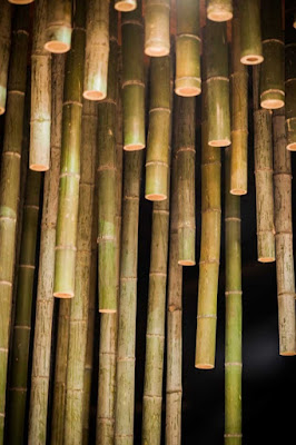 Casa de chá em bambu - Minax