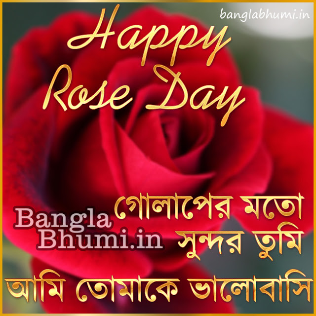 Happy Rose Day Bengali Wishing Wallpaper