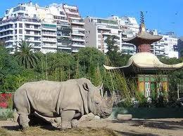 soñar con zoológicos