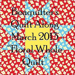 March 2013 Quilt Along