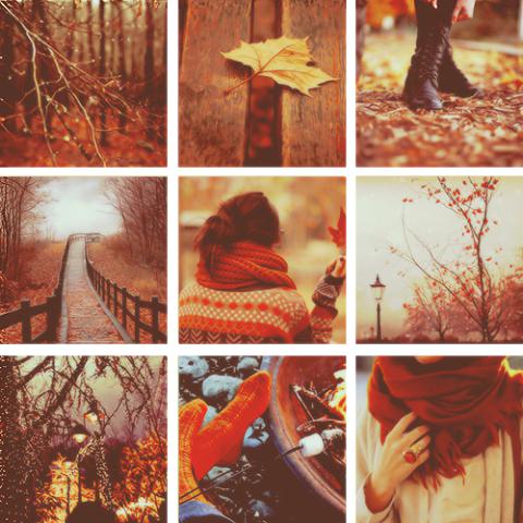 Autumn - inspiracje