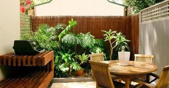 Como decorar patios peque os patios y jardines for Ideas para decorar un patio grande