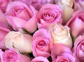 Ya Allah...Jadilah aku mawar yang sentiasa memagari diri..