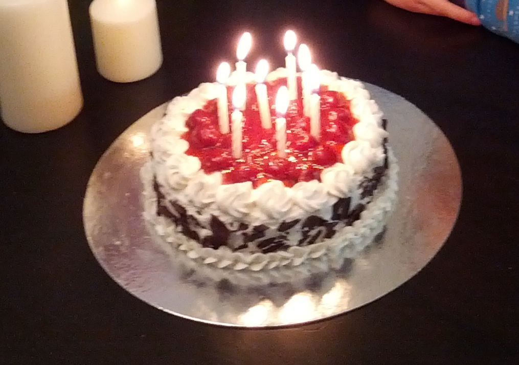 This Was My Elder Sons 8 Year Old Birthday Cake Sorry For The Blurred Picture I Lost Pictures With Closer Looks In Austria Along Cellphone