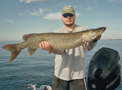 Freshwater sport fishing in montreal quebec and ontario for St lawrence river fishing