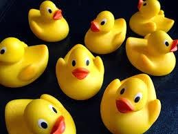http://www.bartbonte.com/duck/