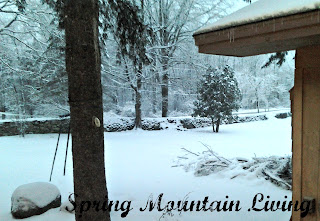 winter homestead at spring mountain living