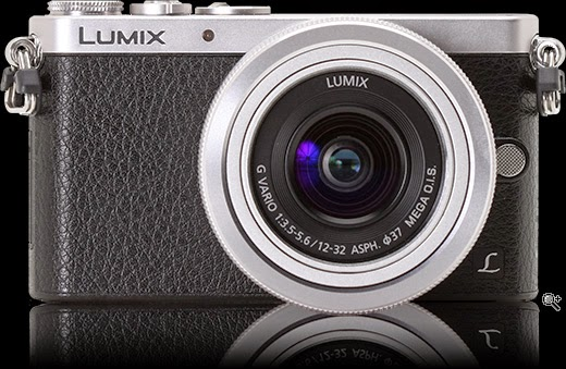 Lumix DMC-GM1 : 2014 product with the year,Lumix DMC-GM1 : 2014 product from the year,Lumix DMC-GM1 : 2014 product with the year,