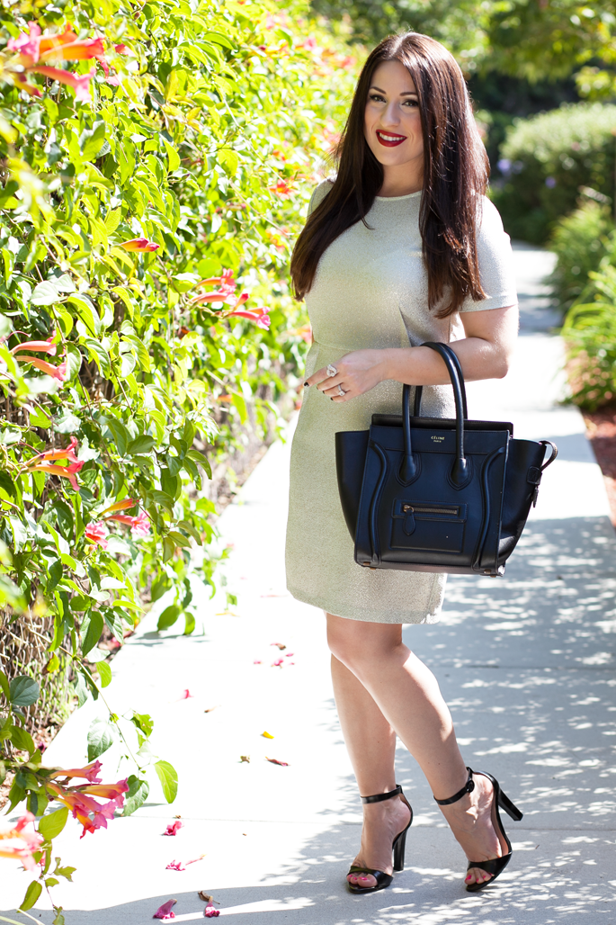 le tote metallic dress, celine tote, envy my hair extensions