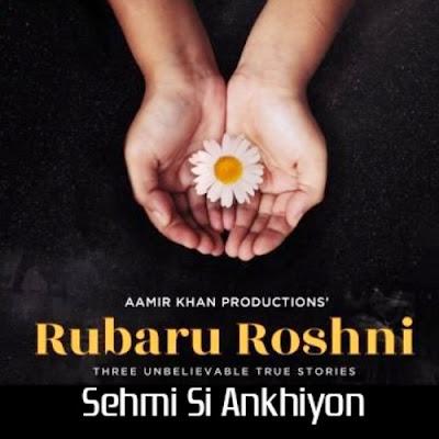Rubaru Roshni 2019 Hindi 480p WEB HDRip 300Mb x264
