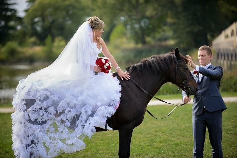 žirgai vestuvėse