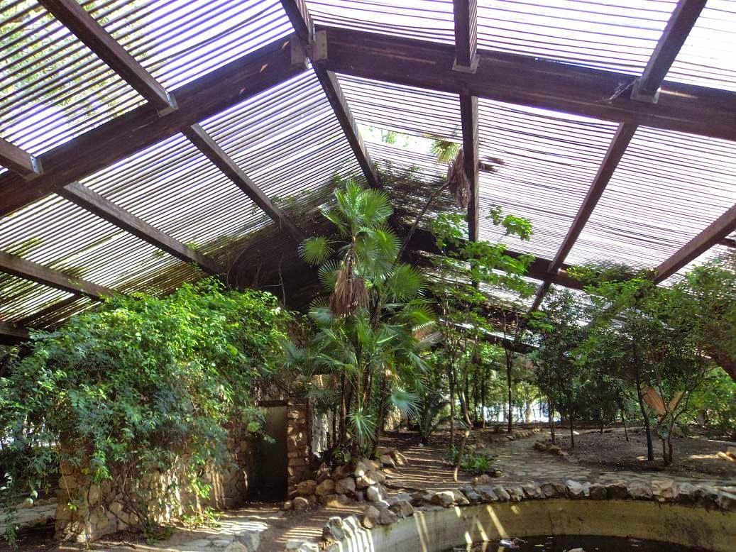 Cultura de sevilla el jard n americano te necesita for Jardin americano sevilla