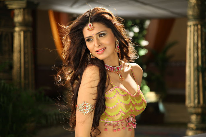 meenakshi dixit new glamour  images