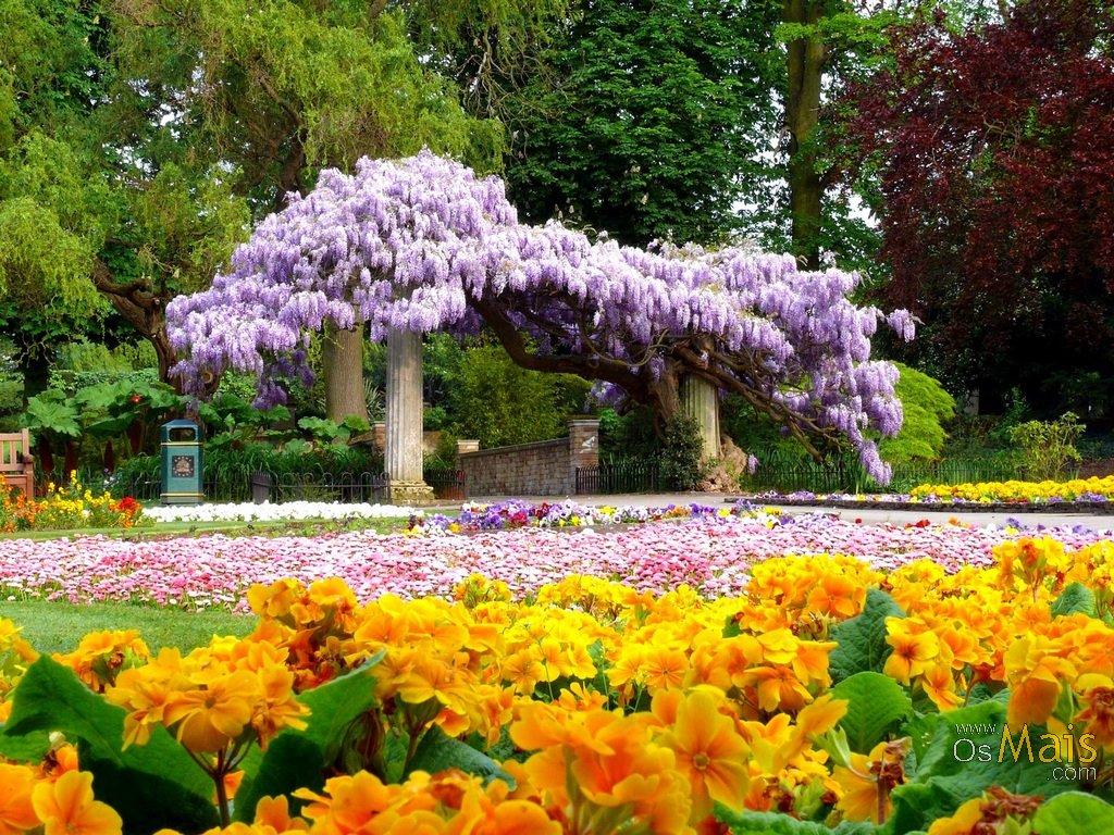 MOVIMENTO DA PALAVRA: O meu jardim florido