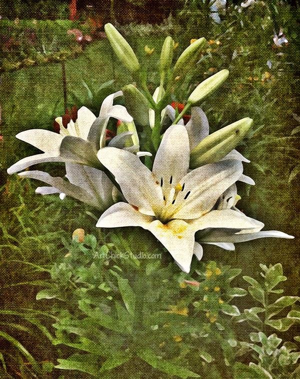 White Lily Art Chick Studio