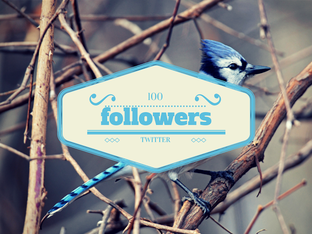 Buy 100 Twitter Followers