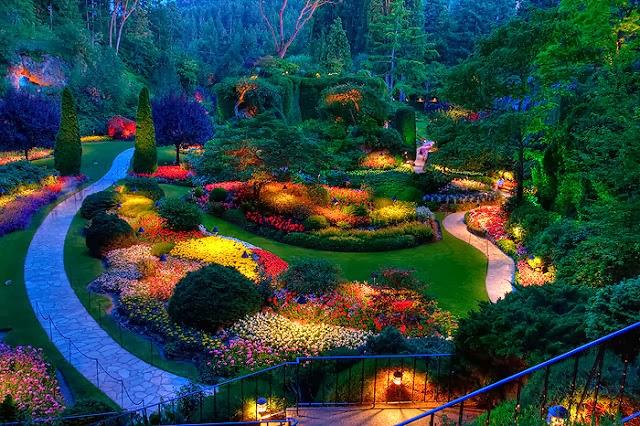 Dise o y decoraci n de la casa luz para decorar y hacer for Luces verdes para jardin