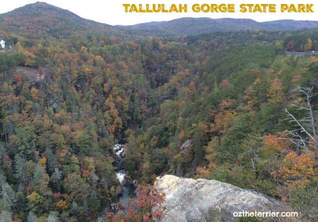 Beautiful view from an overlook in Tallulah Gorge State Park, Tallulah Falls, Georgia
