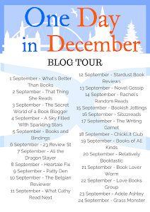 Blog Tour - One Day in December