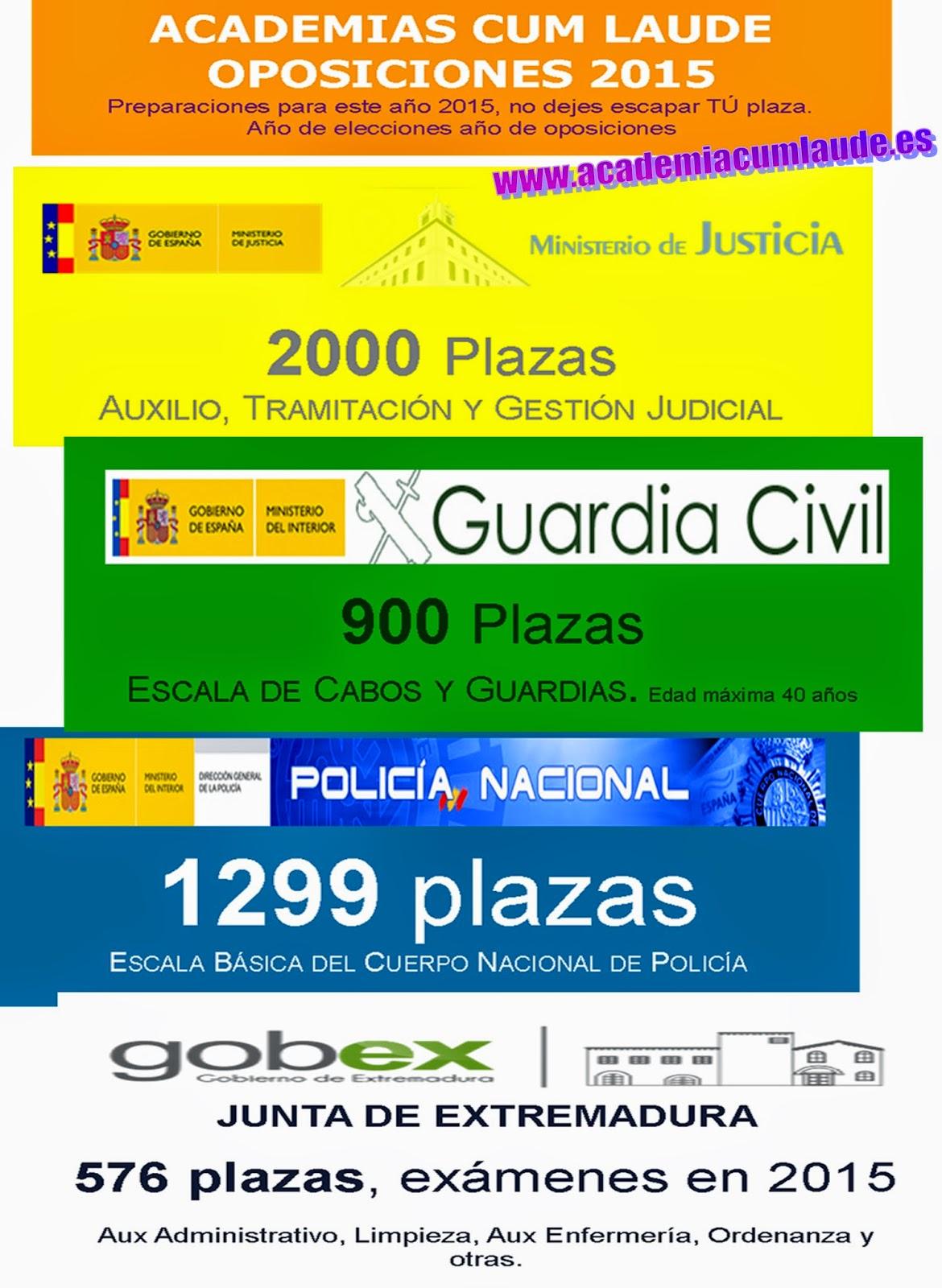 www.academiacumlaude.es