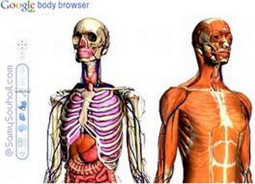 معلومات غريبة في جسم الإنسان تُعرف لأول مرة