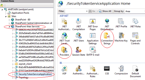SecurityTokenServiceApplication