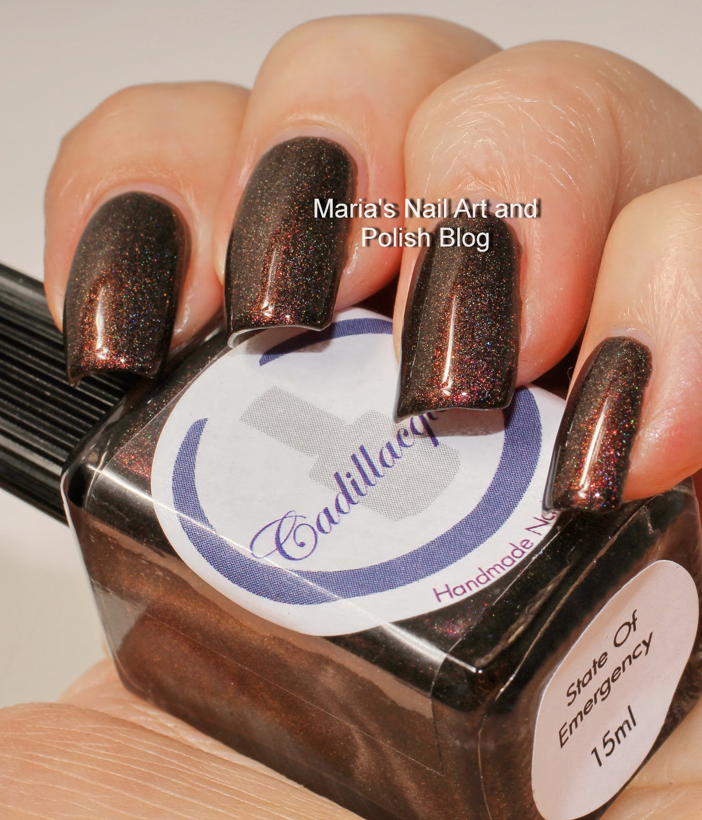 Marias Nail Art And Polish Blog Flushed With Stripes And: Marias Nail Art And Polish Blog: Cadillacquer State Of