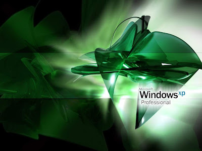 Window Wallpaper Biography